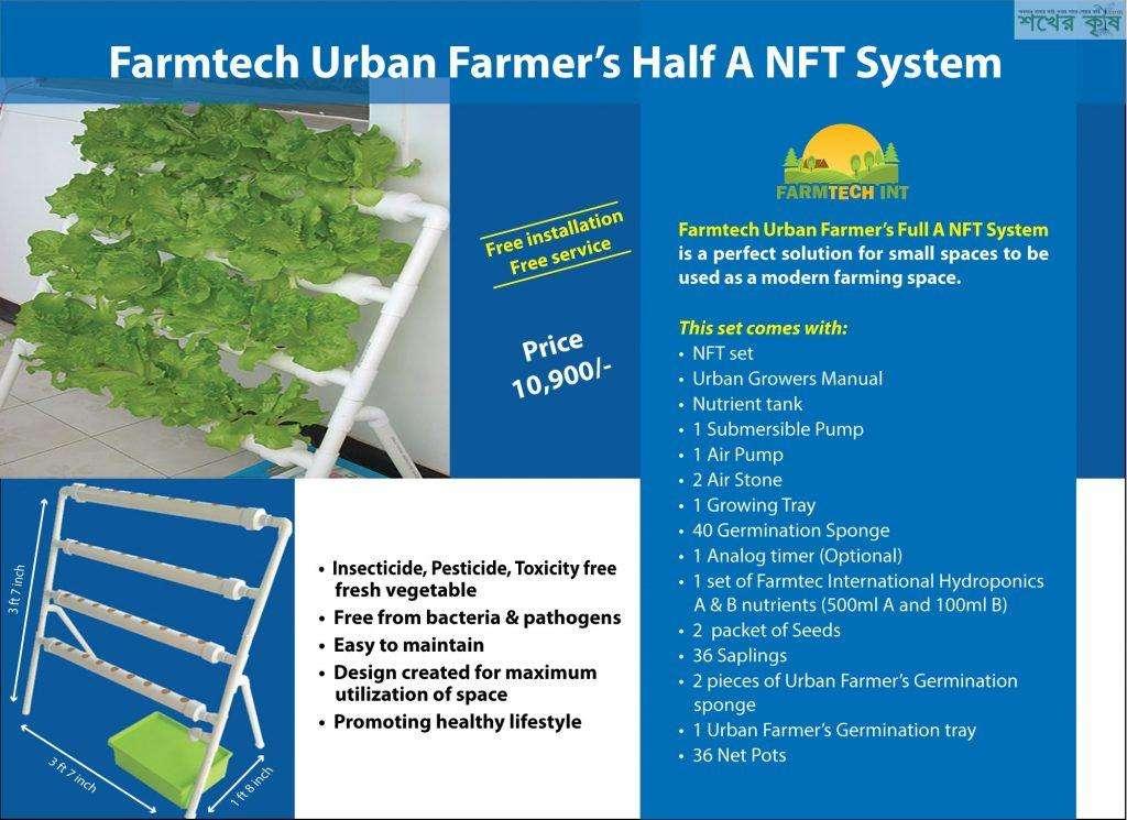 Hydroponic NFT System Bangladesh